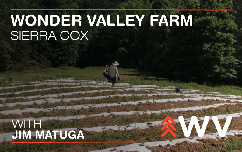 Episode 46 – What do lavender, honey bees and sailboats have in common? – Wonder Valley Farm
